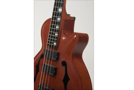 Archtop-Bass-Guitar