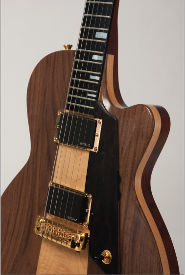 Custom-Electric-Guitar-one-of-a-kind-instrument